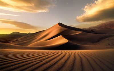 desert, evening, sunset, sand dune, sand, mountain landscape
