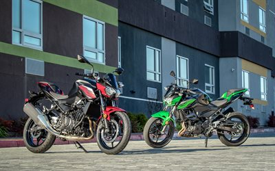4k, Kawasaki Z400, parking, 2019 bikes, two motorcycle, 2019 Kawasaki Z400, japanese motorcycles, Kawasaki