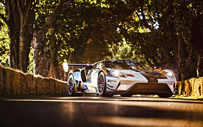 2020, Ford GT Mk II, 4k, exterior, racing car, tuning Ford GT, American sports cars, Ford