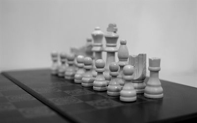 white chess, all figures, monochrome chess photo, game, chess board, wooden chess