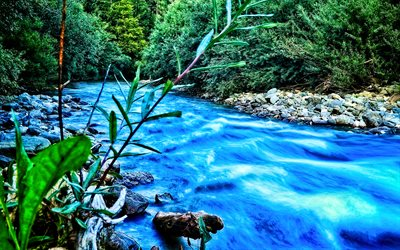 blue river, forest, summer, HDR, beautiful nature, mountain river, fast flow