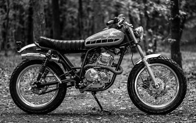 Deus Ex Machina, retro motorcycles, forest