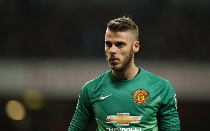 Download Wallpapers David De Gea, Football Stars, 4k