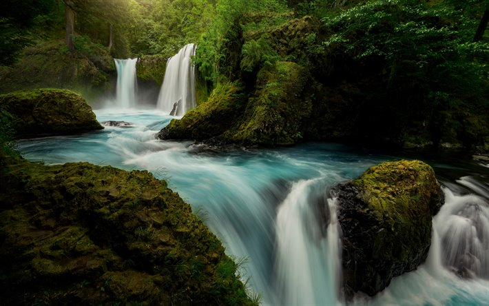 Columbia River, waterfalls, forest, river, Washington, USA, Columbia River Gorge, United States