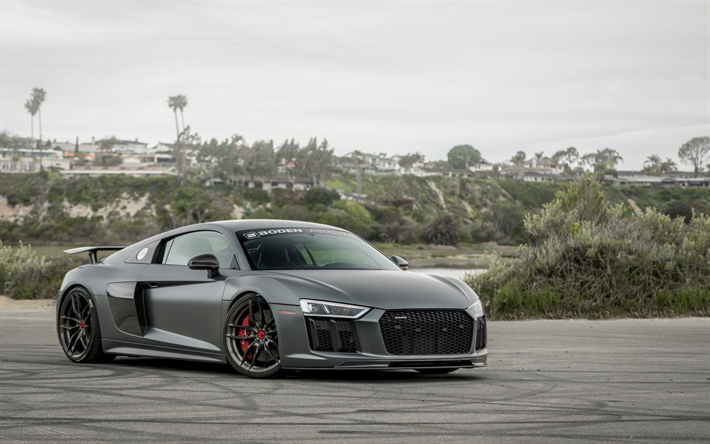 Audi R8, 2018, VRS, Gray Sports Coupe, Gray R8, Tuning,