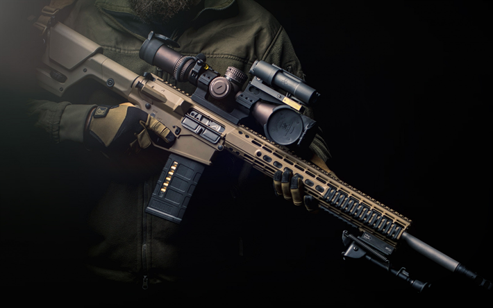 AR-15, American semi-automatic rifle, 556x45 mm, assault rifle, ArmaLite, Colt, Bushmaster, Rock River Arms, Stag Arms, DPMS Panther Arms, Olympic Arms