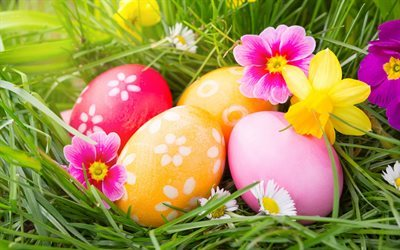 Easter, spring, easter eggs, green grass, colorful eggs