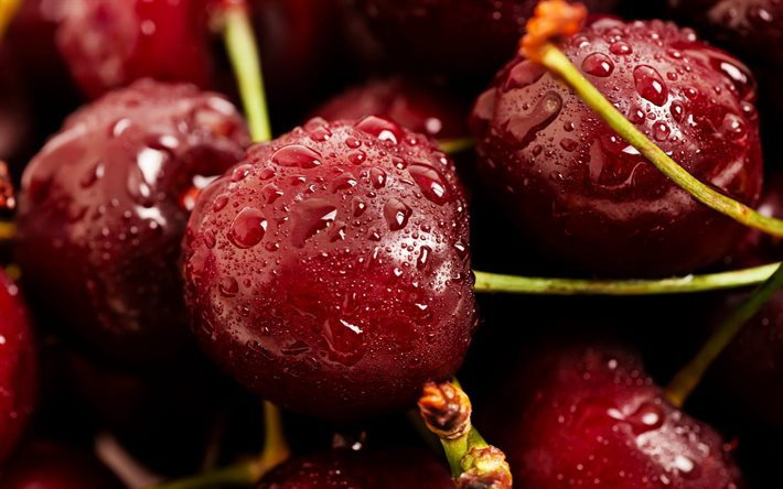 cherries, drops of water, fruits, berries, drops of water on a cherry