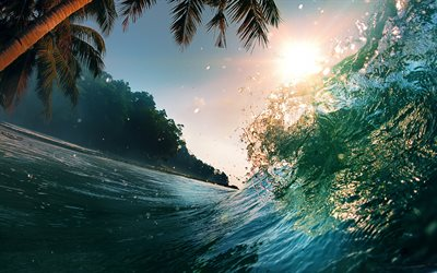 wave, tropical island, palm trees, sunset, evening, ocean, beach, summer travel, palm trees above the water