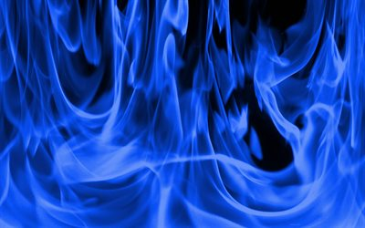 blue fire, macro, fire flames, background with fire, blue burning background, fire, fire textures, blue fire background