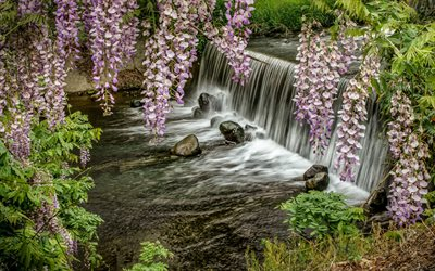waterfall, river, spring flowers, mountain river, beautiful waterfall, Japan