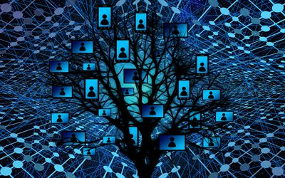 social networks background, tree network concepts, blue network background, technology background, network background