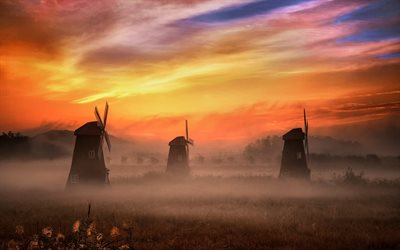 morning, sunrise, mills, field, fog, beautiful landscape