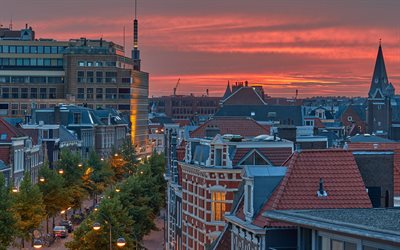 Haarlem, evening, sunset, Haarlem cityscape, park, North Holland, Netherlands