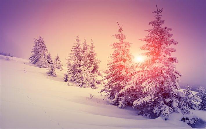 Scarica sfondi inverno neve alberi tramonto paesaggio for Sfondi gratis desktop inverno