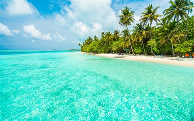 tropical island, beach, summer travel, blue lagoon, palm trees, sand