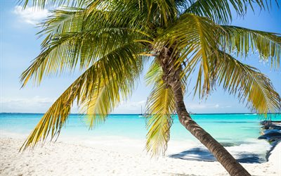 tropical island, white yacht, palm tree, beach, blue lagoon, ocean