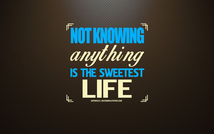 Download Wallpapers Not Knowing Anything Is The Sweetest Life