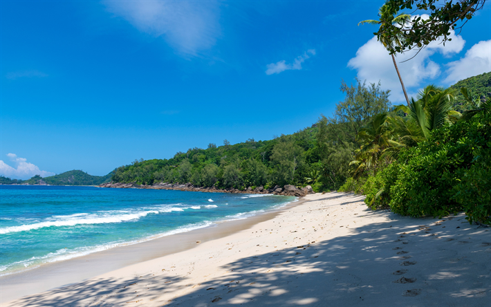 Takamaka, Seychelles, Mahe, tropical island, beach, palm, turquoise water, Indian Ocean