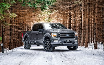 2021, Ford F-150, front view, gray pickup truck, new gray F-150, F-150 tuning, American cars, Ford