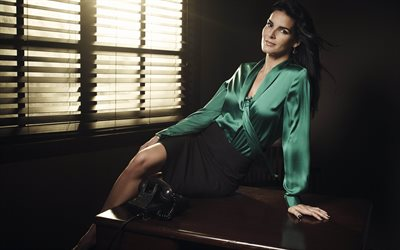 Hollywood, Angie Harmon, beauty, american actress, photomodels
