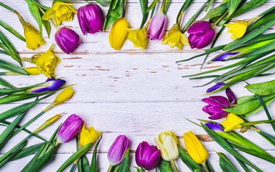 colorful tulips frame, 4k, floral concepts, floral frames, gray wooden backgrounds, colorful tulips