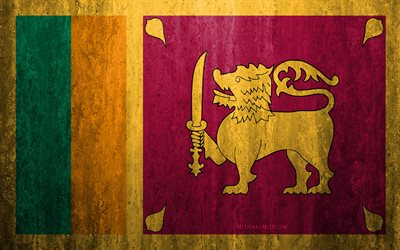 Flag of Sri Lanka, 4k, stone background, grunge flag, Asia, Sri Lanka flag, grunge art, national symbols, Sri Lanka, stone texture