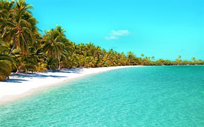 tropical island, summer, ocean, blue lagoon, palm trees, luxury beach, summer travel