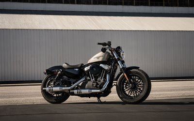 Harley-Davidson Forty-Eight, 2020, side view, american motorcycles, new silver Forty-Eight, Harley-Davidson