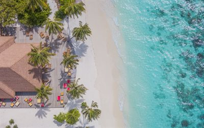 Maldives, beach aerial view, ocean, palm trees, top view, tropical island