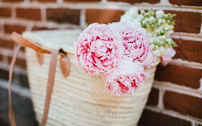 Pink peonies, beautiful flowers, bag, pink petals, peonies
