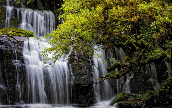 Download wallpapers pbeautiful waterfall green tree lake - Waterfalls desktop wallpaper forest falls ...