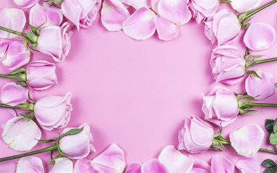 Frame of pink roses, pink background, heart frame, pink roses, pink flowers