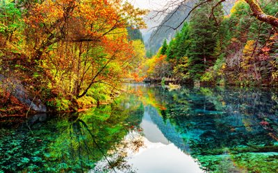 Jiuzhaigou National Park, 4k, autumn, blue lake, forest, China, beautiful nature, Asia, Valley of Nine Villages