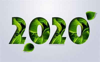 2020 Year, numbers from green leaves, 2020 Year concept, Happy New Year 2020, white background, eco concepts