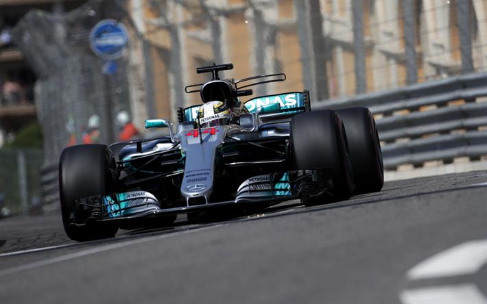 Lewis Hamilton Formula 1 Mercedes W08 F1 AMG Petronas Team