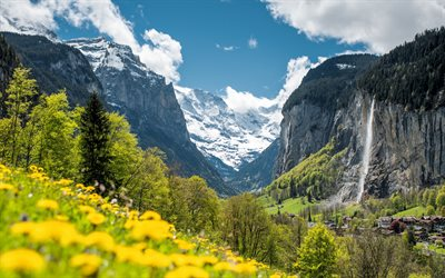 Staubbach Fall, Alps, waterfall, mountain landscape, yellow wildflowers, waterfalls of Switzerland, Europe, Lauterbrunnen, Switzerland, Bernese Highlands