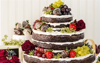 wedding cake, fruit, chocolate multi-tiered cake, wedding concepts, sweets, baked goods