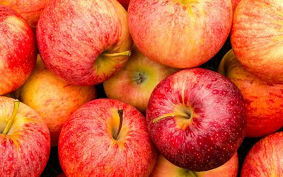 apples, fruits, ripe apples, apples background, fruit background