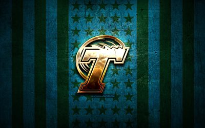Tulane Green Wave flag, NCAA, blue black metal background, american football team, Tulane Green Wave logo, USA, american football, golden logo, Tulane Green Wave