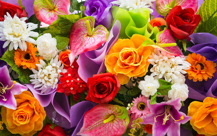 Free Colorful Flower Wallpaper Downloads: Download Wallpapers Lilies, Chrysanthemums, Roses, 4k