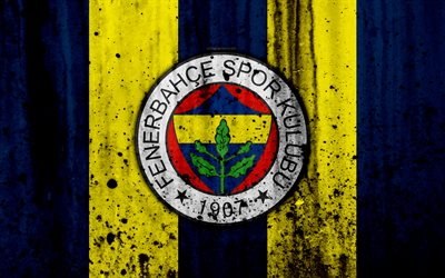 Download wallpapers FC Fenerbahce, 4k, Super Lig, logo