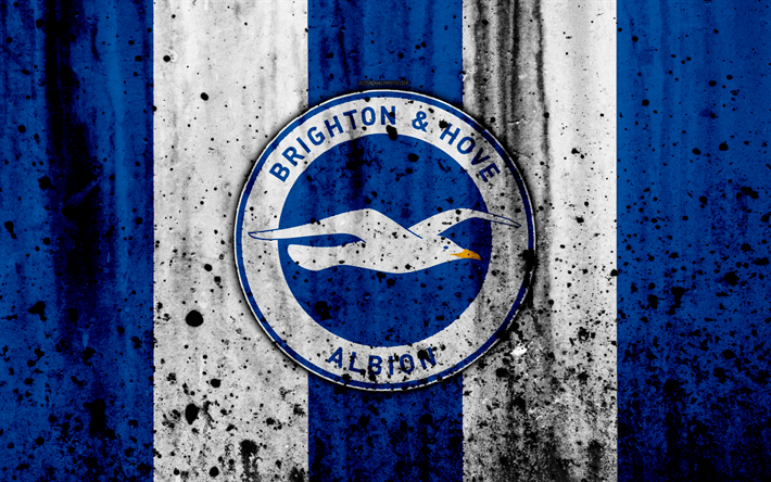 https://besthqwallpapers.com/Uploads/15-11-2017/28835/thumb2-fc-brighton-and-hove-albion-4k-premier-league-logo-england.jpg