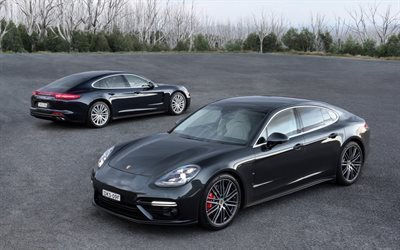 Porsche Panamera, 2017, front view, rear view, sporty 4-door coupe, gray Panamera