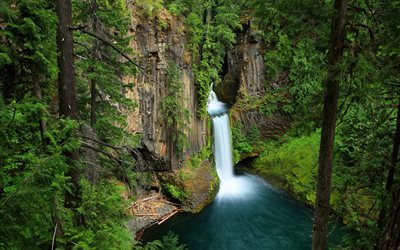 Toketee Falls, forest, cliffs, Oregon, waterfalls, USA, America