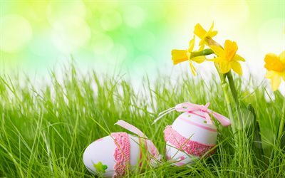 Easter, spring, easter eggs, green grass
