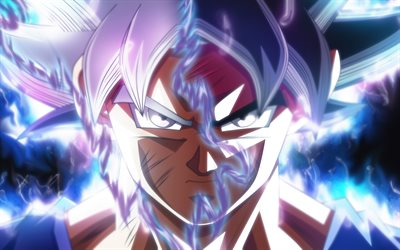 Ultra Instinct, Dragon Ball, Goku Ultra, Ball Super, Instinct Dragon, Migatte no Gokui