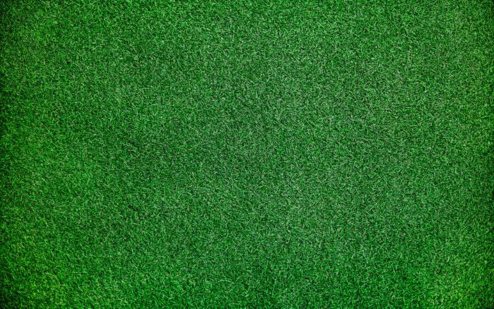 Scarica Sfondi Erba Verde Texture Macro Sfondo Verde Erba