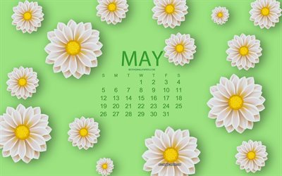 2019 May Calendar, white flowers, floral background, calendar for May 2019, creative art, green background, spring, 2019 calendars