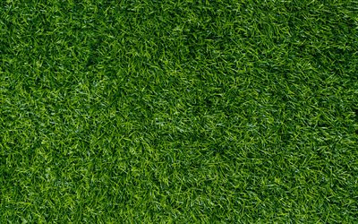 green grass texture, green lawn, grass background, environment, ecology, grass green background